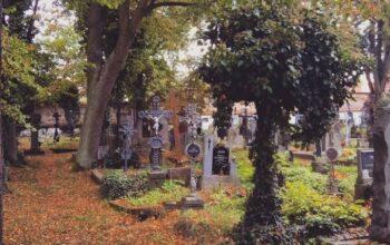 Článek: Dušičky a Halloween, co mají tyto svátky společného?