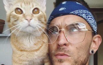 Článek: 9 tipů, jak žít s kočkou